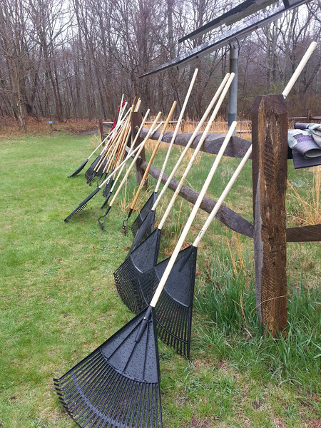 Instead of reaching for their umbrellas, many volunteers grabbed a rake . . .