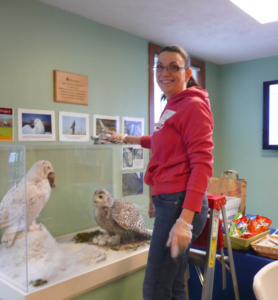 while others chose indoor projects, cleaning the exhibit area . . .