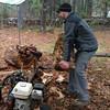 They cut logs . . .