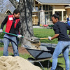 Filling a wheel barrel takes lots of shovels -- and team work.