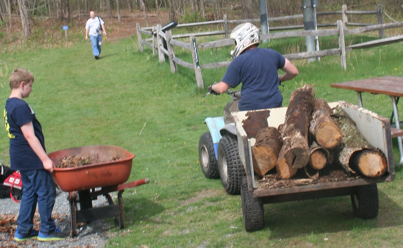 The logs from felled trees are about to be given a new life -- in Oak Knoll's Nature Play Area.