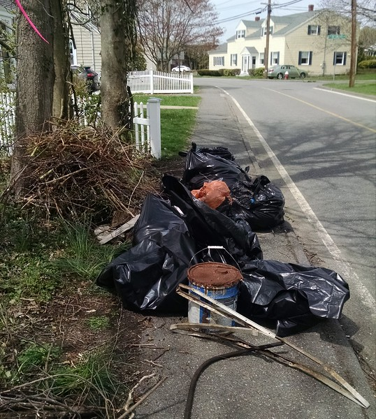 Volunteers remove trash, winter debris,  and recyclables from Nahant Thicket.