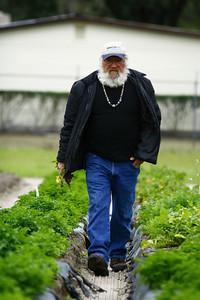 George, a forth-generation Florida farmer