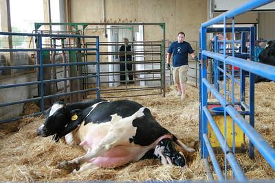 100605 Breakfast on the Farm Mill Creek Dairy 035