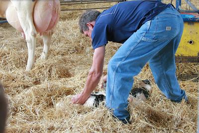 100605 Breakfast on the Farm Mill Creek Dairy 037