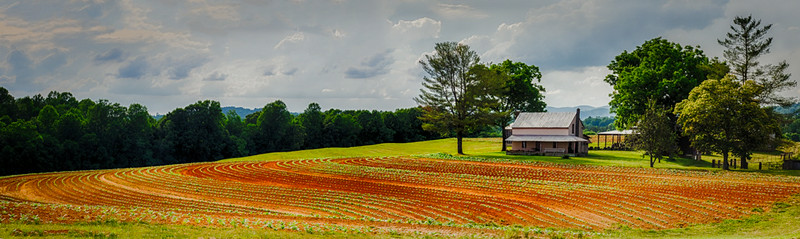 the farm, stokes county, NC