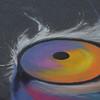 Tiger Eye ...by Eddie Moreno