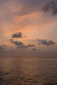 Key West Print Nicki-00291