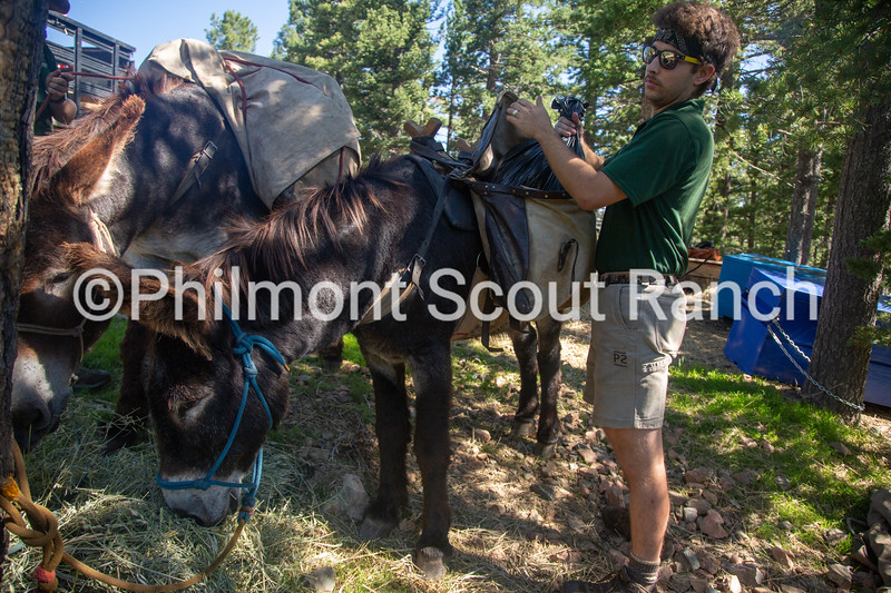 Charlie Vesely unloads trashbags from the burros at the top of the Black Mountain drop off on Tuesday, August 13, 2019 at Philmont Scout Ranch in Cimarron, New Mexico.