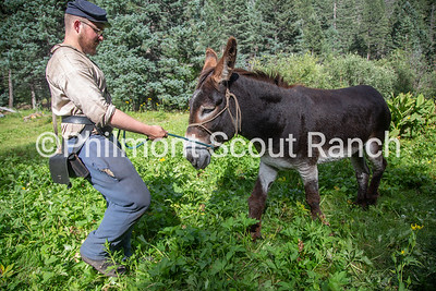 Cliffton Sutherland walks one of Black Mountain camp's two burros to the burro pen at Black Mountain camp on Sunday, August 11, 2019 at Philmont Scout Ranch in Cimarron, New Mexico.