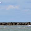 0902 kite surfer