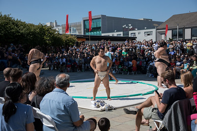 Sumo Champions Exhibition