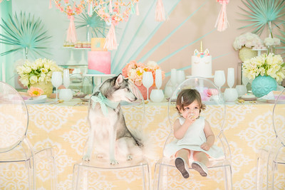 061_KLK_Sunny Unicorn Party