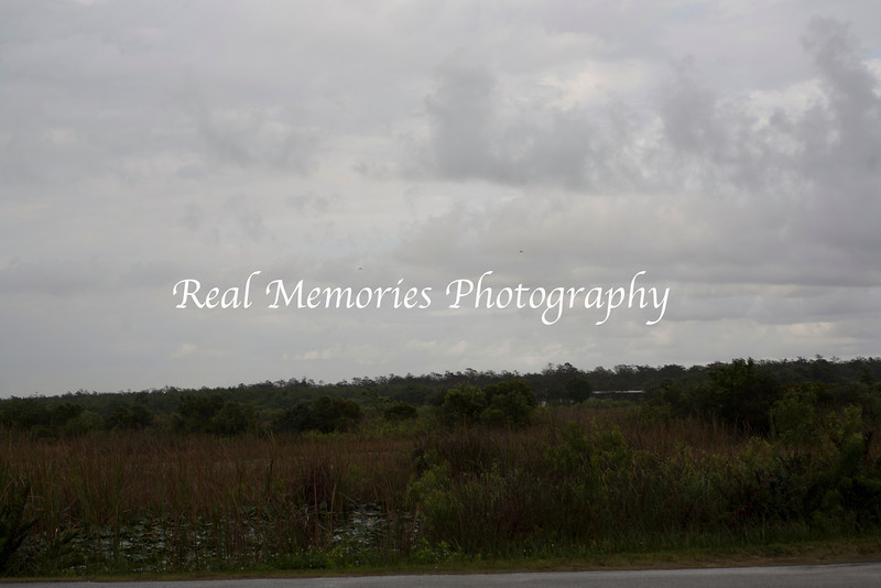 ©RMP2012-03-10-2012- Sunset-Safari_-13