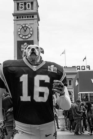 Super Bowl City 2016