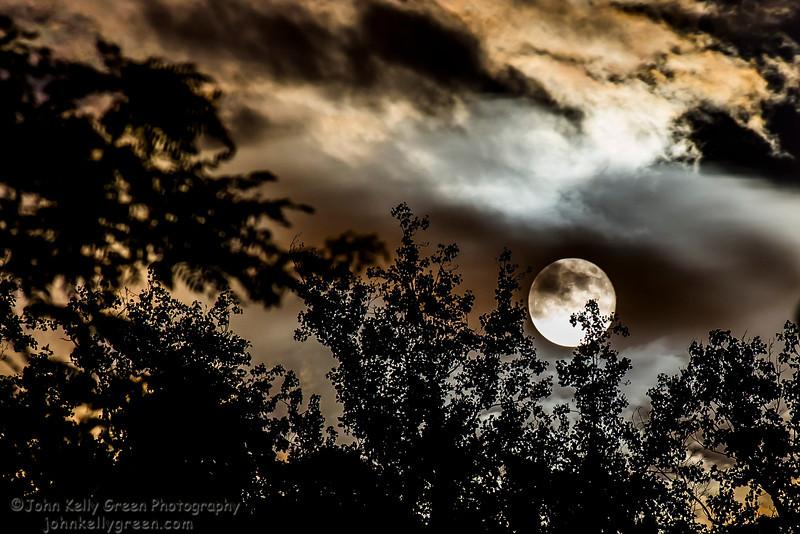 Moon_Fire_Hoop_Dance_005