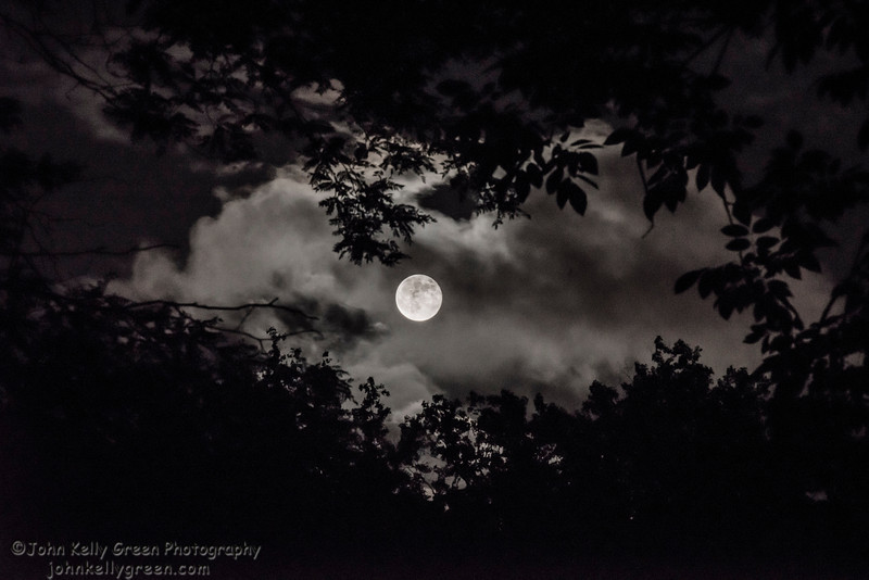 Moon_Fire_Hoop_Dance_008