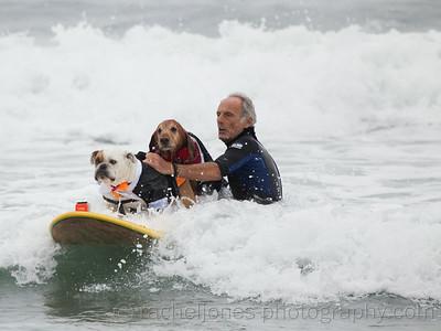 SurfDog-40