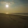 Surfer's Healing -Lido West 2013-006