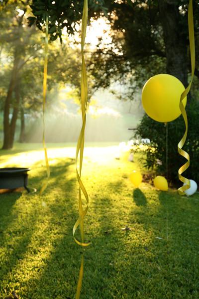 Emily's Surprise Party 049