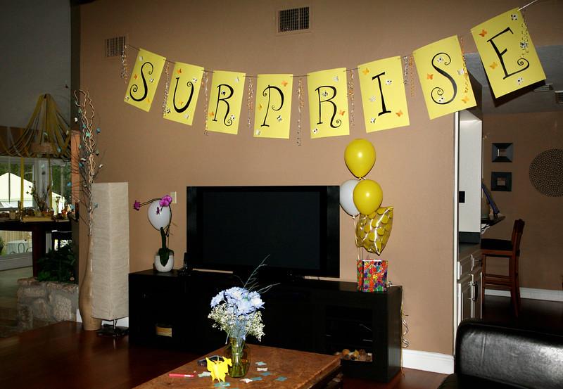 Emily's Surprise Party 006