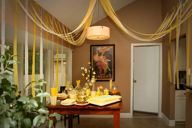 Emily's Surprise Party 038
