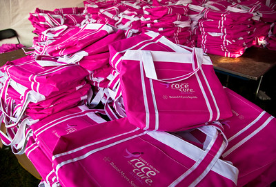 Close to 50,000 breast cancer survivors and activists descended on the National Mall in Washington D.C. on June 5, 2010 for the 21st annual Susan G. Komen Global Race for the Cure. The event raises millions of dollars for the fight against breast cancer. (Photo by Jeff Malet)