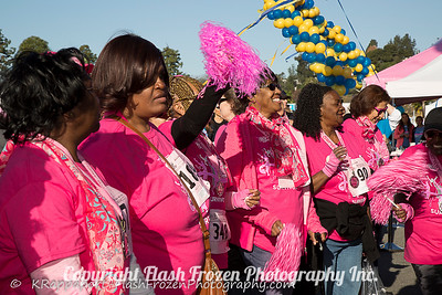 Flash Frozen Photography Komen Race 2016-27