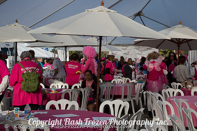 Flash Frozen Photography Komen Race 2016-5