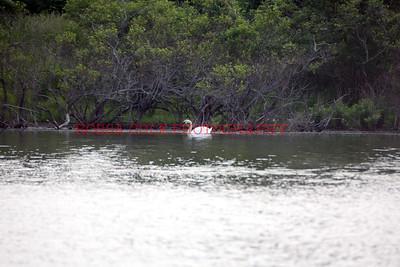 on the lake 3