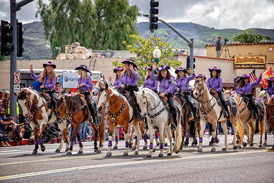 Purple shirt cowgirls & palominos