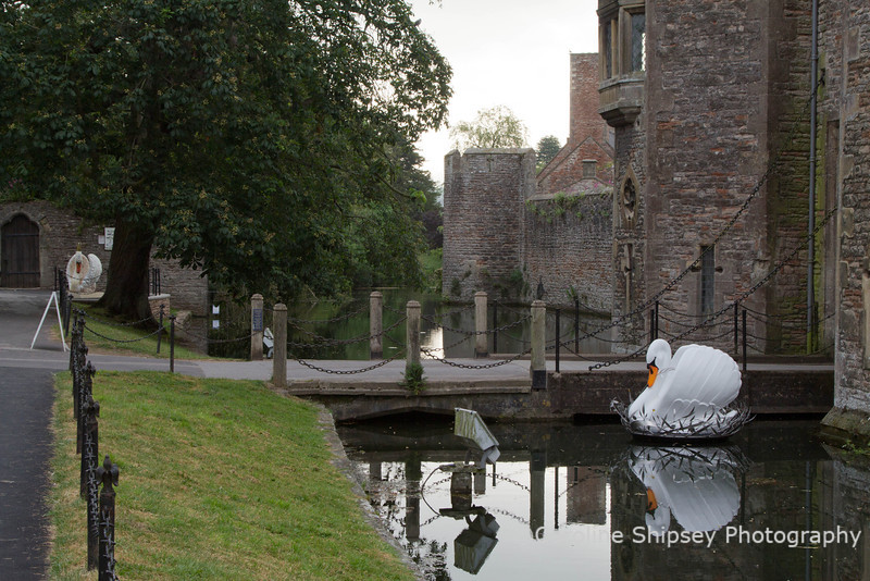 Guinivere - She built a nest of silver leaves No.21<br /> Bishop's Palace Moat