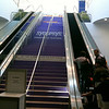 Synopsys paid to have its name painted on the stairs descending into both the North and the South halls.