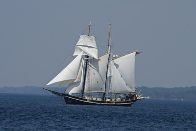 TALL  SHIPS  BROCKVILLE  JUNE 2013