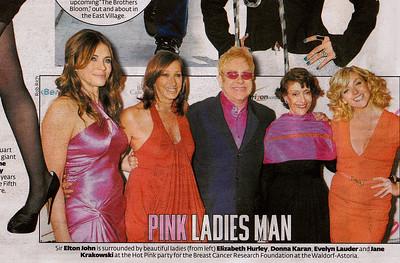 Elizabeth Hurley, Donna Karan, Elton John, Evelyn Lauder, Jane Krakowski/ NY Post
