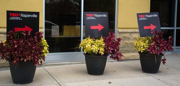 TedXNaperville  LR-6756