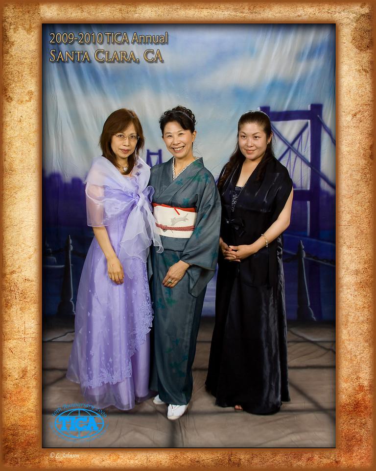 TICA 2010-043