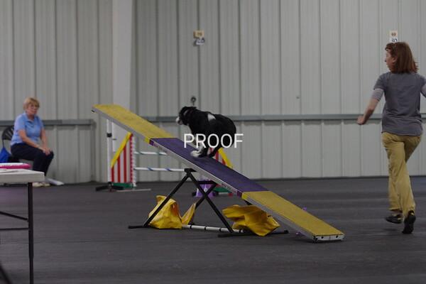 IMGP5190