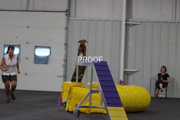 IMGP5331