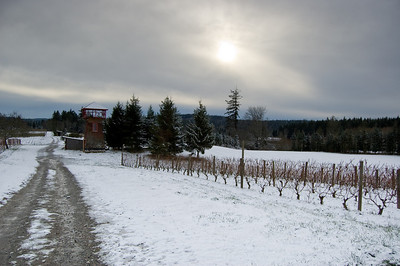 Farm Walk 2008-12-14