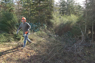 Farm Work 2009-01-31