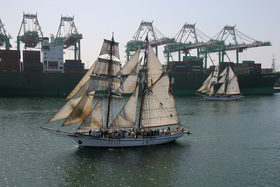 II thought these two sister ships made a pretty pair, with their sails set exactly the same.