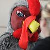 Tamarac Turkey Trot 5K : November 27, 2008 at Tamarak City Hall, Tamarak, FL