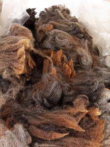 Wool !