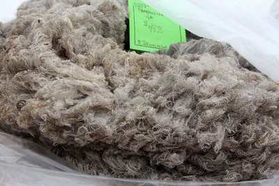 Raw wool for roving and spinning.