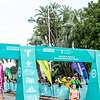 Tauranga International Marathon images