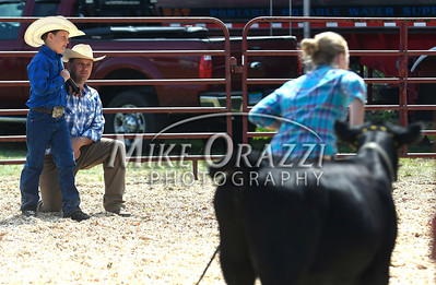 8/26/2017 Mike Orazzi | Staff Bruce Petow and his son Austin while judging the beef cattle show at the Terryville Lions County Fair Saturday morning.