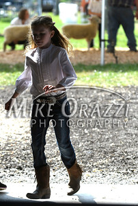 8/26/2017 Mike Orazzi | Staff Penny Kemp walks into the barn to get her sheep to show at the Terryville Lions County Fair Saturday morning.