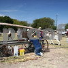 Mule powered sugar cane grinder.