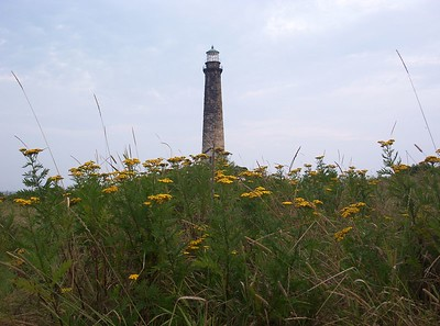 "<font color=""CCFFCC"">Thacher Island 2003 (Aug. 16-31)"
